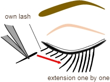 Eyelash extension tips grease international beauty academy knowledge5 altavistaventures Gallery